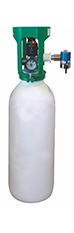 Type of oxygen cylinder: B10P